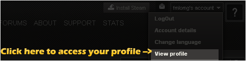 how to see steam profile url